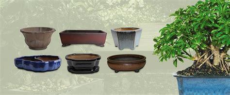 vasi per bonsai grandi vasi per bonsai curare bonsai vaso bonsai