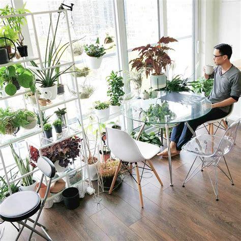 houseplantjournal houseplants accounts