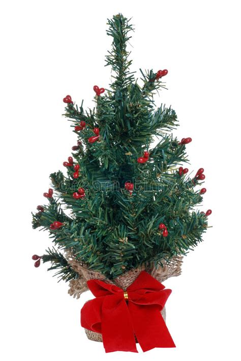 awesome picture of where to buy mini christmas tree