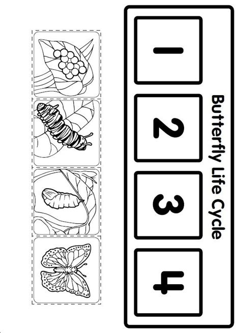 crafts actvities and worksheets for preschool toddler and 912 | life cycle butterfly worksheet for kids 1