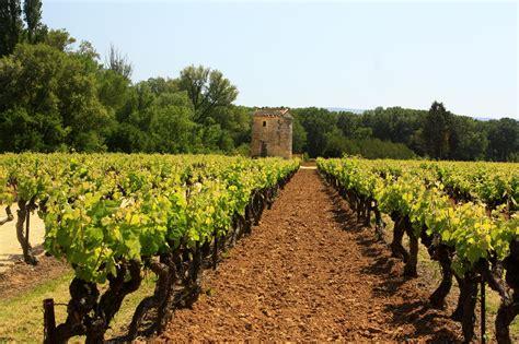 chambre hote chateauneuf du pape wine and vineyards côtes du rhône clos des lavandes