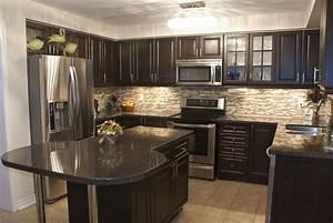 Magnificent, Kitchen, Designs, With, Dark, Cabinets
