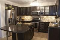 dark kitchen cabinets Magnificent Kitchen Designs With Dark Cabinets