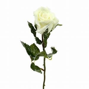 Deko In Weiß : deko rose wei beschneit 6cm 6st kaufen in schweiz ~ Yasmunasinghe.com Haus und Dekorationen
