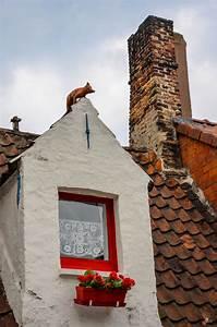 Cottage, Window, By, Chriswtaylor, Ernststrasser, Belgien, Belgium