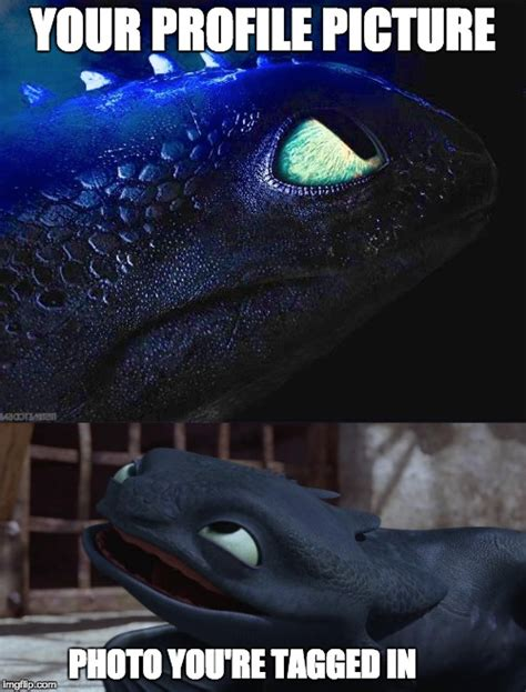 How To Train Your Dragon Memes - image tagged in toothless how to train your dragon imgflip