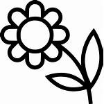 Flower Icon Flowers Svg Bouquet Icons Cdr