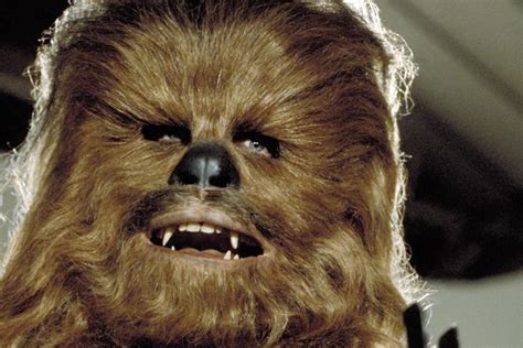 chewbacca return  star wars vii