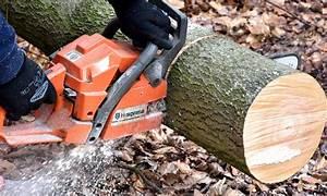 Husqvarna Vs Stihl : stihl vs echo vs husqvarna which is the best chainsaw ~ A.2002-acura-tl-radio.info Haus und Dekorationen
