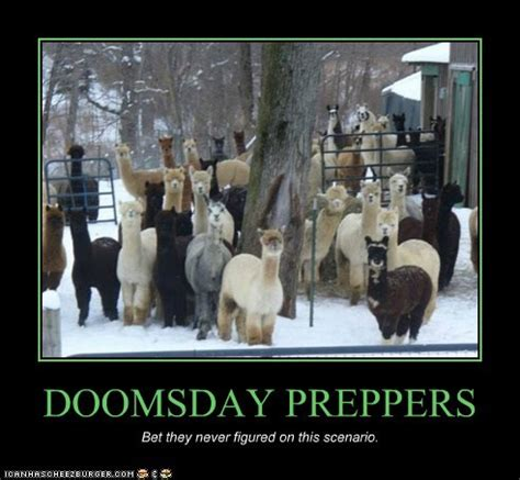 Doomsday Preppers Meme - doomsday preppers meme 28 images doomsday prepper kitty edition the most adorable thats