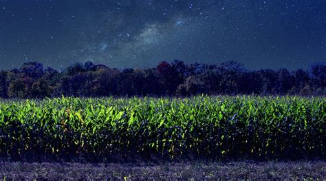 microwave wall starry corn field one track mind photography