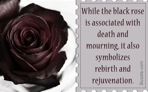 the meaning of the color black varying meanings of the black based on different