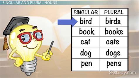 singular plural nouns lesson for lesson