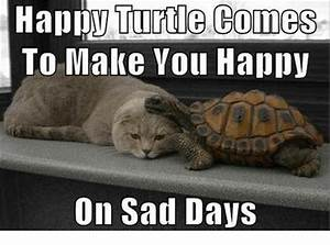 Happy Turtle Comes To Make You Happy On Sad Days Meme On