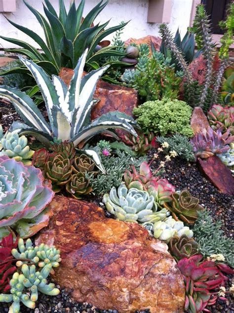 25 best ideas about succulents garden on