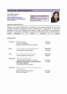 Modelo De Curriculum Vitae Objetivo Laboral