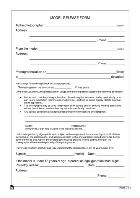 model photo copyright release form word