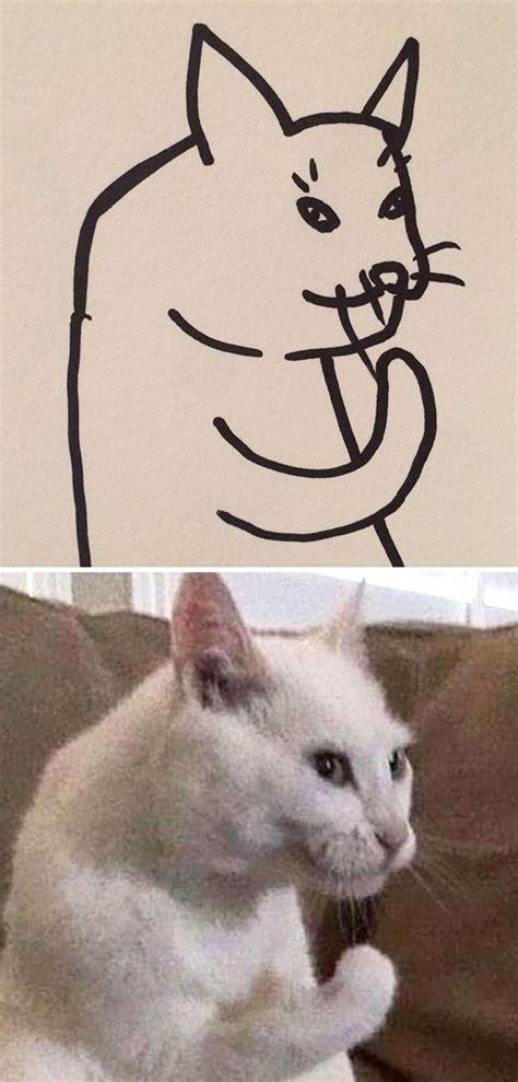teacher     draw cats