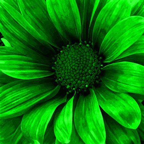 neon green mixed media by vick