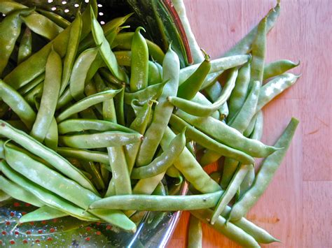 types of green beans green beans with cherry tomatoes and caramelized lemon balsamic onions savory salty sweet