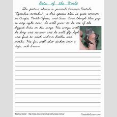 Free Cursive Handwriting Practice! Bats Of The World 12page Packet From Printablecursivecom