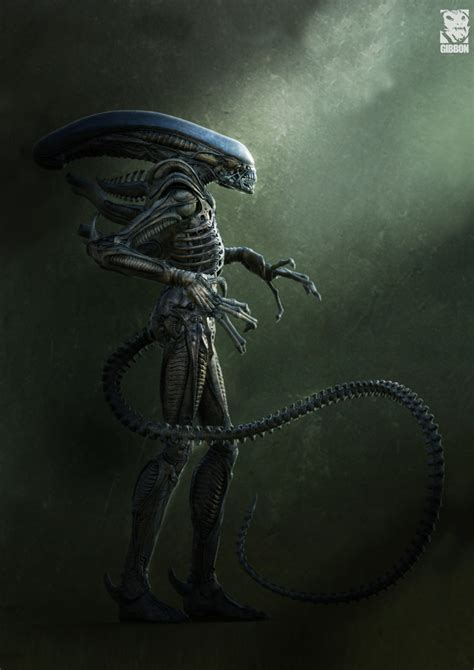 Alien Vs Predator Wallpaper Xenomorphtfs Deviantart Favourites