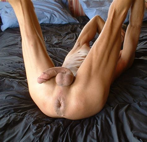 jpg Porn Pic From Shaved big cock  balls and ass