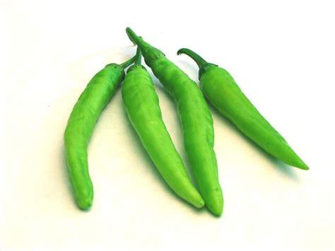 egyptian fresh green hot chilli productsegypt egyptian