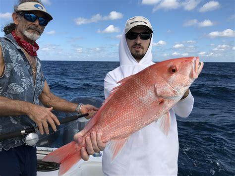 oscar grouper florida snapper delphfishing