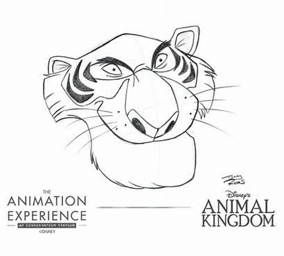 Animation Disney Animal Experience Animals Draw Drawing
