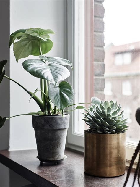 Window Ledge Plant Pots by Simple Refined And Personal Apartment In Gothenburg