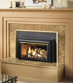 direct vent gas fireplace insert napoleon gdizc direct vent gas fireplace insert gdizc nsb