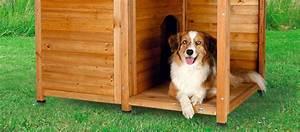 Niche D Intérieur Pour Chien : comparatif meilleure niche pour chien guide avril 2019 ~ Dallasstarsshop.com Idées de Décoration