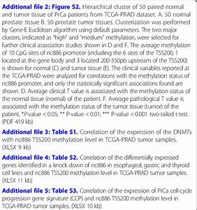 Abbreviations Ccp  Prostate Cancer Cell Cycle Progression