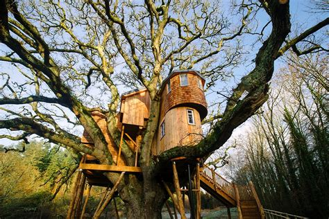 Treehouse Holidays-treehouses For Rent With Coolstays