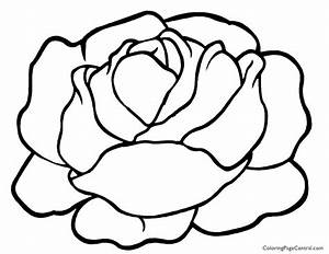 Lettuce 01 Coloring Page | Coloring Page Central