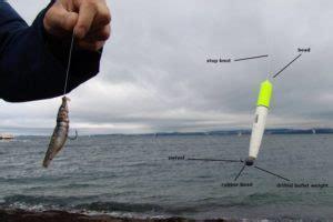 reasons     saltwater float fishing