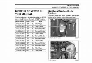 Service Manual 2009 Evinrude E N