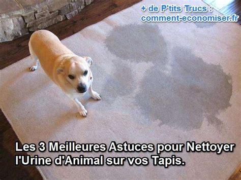 comment enlever odeur urine de chat sur tapis nettoyer urine sur tapis 28 images 17 meilleures id 233 es 224 propos de nettoyage de taches