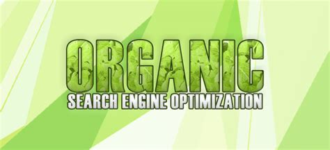 Search Engine Optimization Management by Seo Nepal Digital Marketing Consultant Roshan Joshi