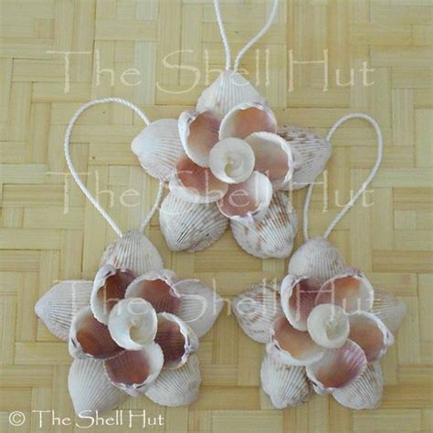 best 25 shell flowers ideas on pinterest seashell crafts mussel ideas and shell art