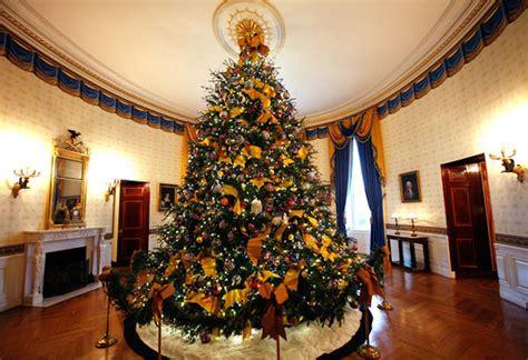 beautiful christmas trees  america american