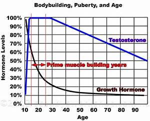 Puberty And Bodybuilding