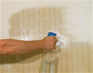 Décollage Papier Peint : d coller ancien papier peint d collage papier peint utilisation d colleuse ~ Dallasstarsshop.com Idées de Décoration