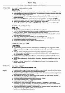 software asset manager resume samples velvet jobs With software asset management resume examples