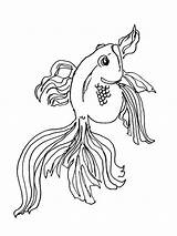 Coloring Pages Goldfish Fish Print Printable Recommended Goldfishes sketch template