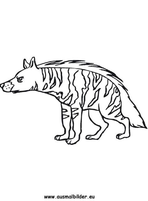 ausmalbilder hyaene hyaenen malvorlagen
