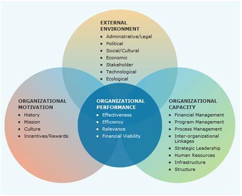 evaluating  performance   organization