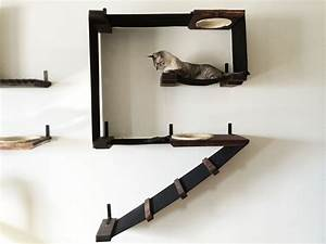Cat Wall Shelves DIY Photos