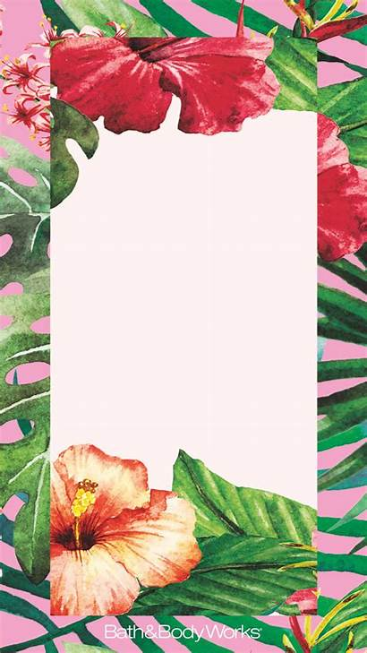 Iphone Tropical Flowers Wallpapers Backgrounds Bathandbodyworks Phone